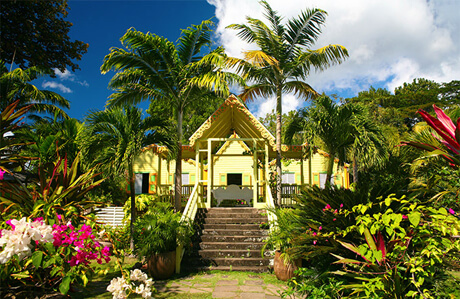 st.kitts-and-nevis