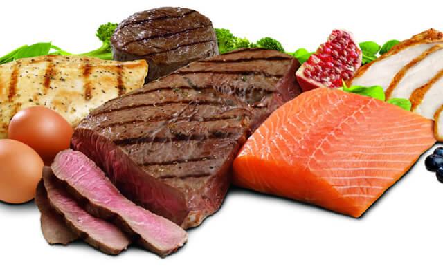 protein-1