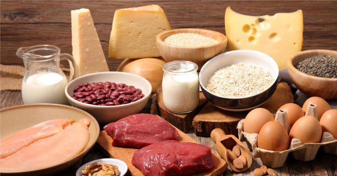 Protein Diyeti Listesi